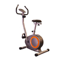 Maisi Upright Bike