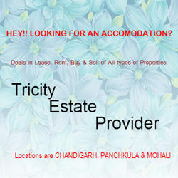 Real Estate Consultant in Chandigarh