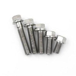 Stainless Steel Hex Flange Bolt