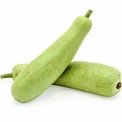 A Grade Green Bottle Gourd, Carton, 5 Kg