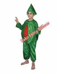 Kids Watermelon Costume