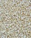 Hulled Sesame Seeds New Crop