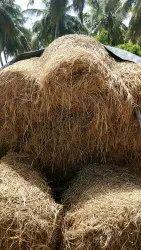 Organic Karnataka Chopped paddy Straw for Mushroom, Packaging Type: Plastic Bag, Packaging Size: 20 Kg
