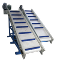 Loading Chain Conveyor