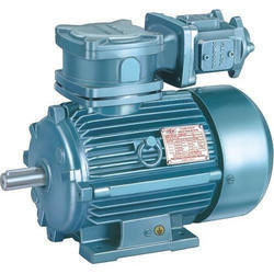 Hindustan Flame Proof Motor