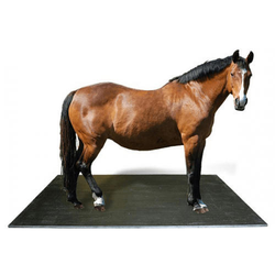 Horse Mat