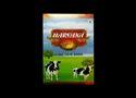 Haryana Dairy Pure Deshi Ghee
