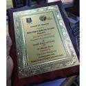 Health Checkup Award Trophy