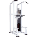 Back Commercial Chin Dip Machine, For Gym, Model Name/number: 2463
