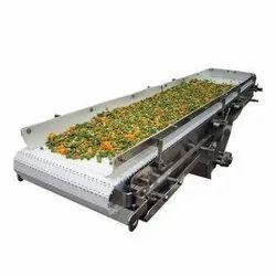 Vegetable & Fruit Washing Conveyor