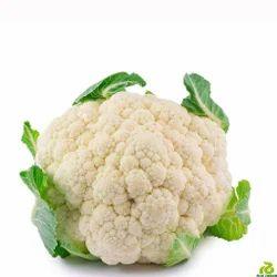 Bishop RZ F1 Cauliflower Seeds