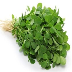 A Grade Green Fresh Methi