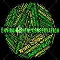 Environmental Conservation Thesis Writing Services Consultancy