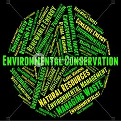 Environmental Conservation Thesis Writing Consultancy Services