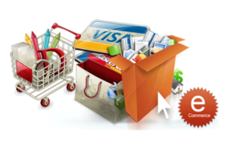 E-Commerce Web Designing and Development