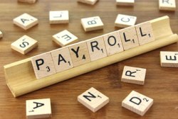 Online Salary Processing Payroll Services, in Pan India
