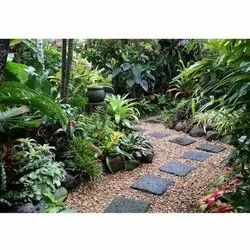 Grass Tropical Garden Landscaping Services, For Home, Residence Etc