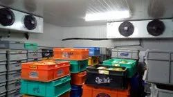 Solar Cold Storage Room