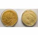 High Quality Organic Cassia Tora Powder in Bulk