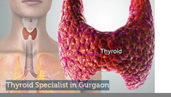 Thyroid Disorders Treatment Service