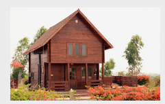 Wooden Villa Design Services