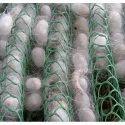 Green HDPE Plastic Netrika or Plastic Chandrika HDPE SeriCulture Net