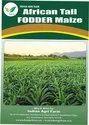 African Tall Maize / Fodder Maize / Makka (Zea Mays) Fodder Seeds