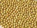 Soybean Isoflavone Extract