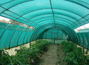 Green Plastic Agro Shade Net, Packaging Type: Roll