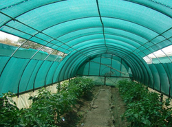 Green Plastic Agro Shade Net