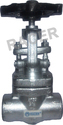 Screwed End Forge Steel Globe Valve