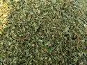 Dried Papaya Leaf