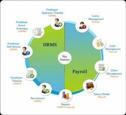 Payroll  Window Application Development Services