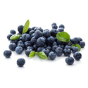 Bilberry Extracts
