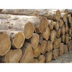 Ivory Coast Wood Log