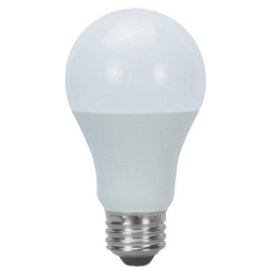 9W LED Glass Bulb