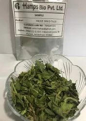 Freeze Dried Tulsi
