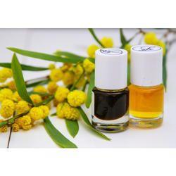 Mimosa Oil