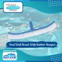 Pool Wall Brush With Rubber Bumper