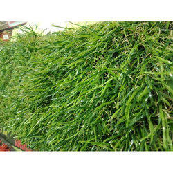 Plastic Artificial Grass