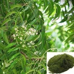 shivamadi exports Neem Extracts
