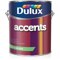 Dulux Accents Paint