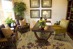 AMBAY Hand Tufted Wool / Viscose Carpets