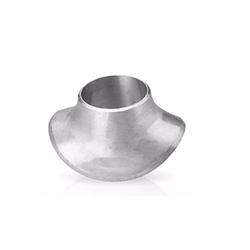Stainless Steel Sweepolet