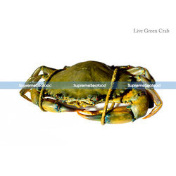 Live Green Crab, Usage: Restaurant, Household, Mess
