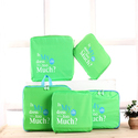 Green Luggage Organizer