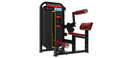 Lying Leg Curl Gym Equipment