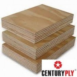 Century Club Prime BWP Ply 16 mm
