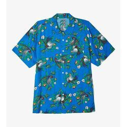 Cotton Printed Men's Shirt, Multicolor