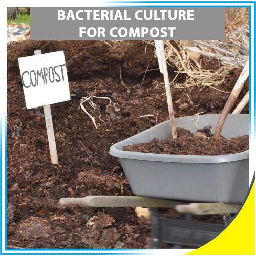 Bacterial Culture For Compost, For Industrial, Acuro